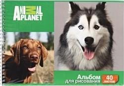 Характеристрики и размер товара Набор альбомов для рисования Action! Animal Planet на гребне 40 листов 2 дизайна